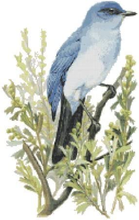 Nevada State Bird And Flower Mountain Bluebird And Sagebrush Counted Cross Stitch Pattern By Boston Needleworks Amazon Ca Office Products