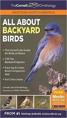 All About Backyard Birds Western North America Laura Erickson Brian Scott Sockin Hugh Powel Pedro Fernandes 9781943645060 Amazon Books