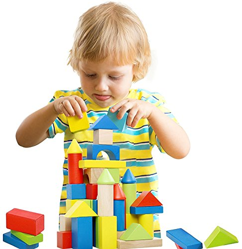 Deluxe Handcrafted Wooden Building Blocks Set - 50 Pieces -