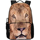 Vere Gloria Teen Girl Backpacks Review and Comparison