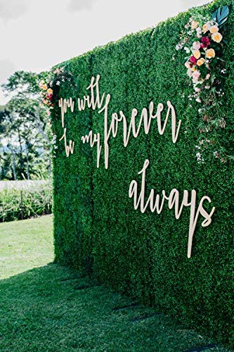 8x8 Feet Artificial Boxwood Hedge Backdrop Wall, Greenery Decor Wall for Party Decor/Event Wall/Birthday/Wedding/Photo Studio Background Wall (8ftx8ft) -