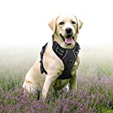 Rabbitgoo  Dog Harness No-Pull Pet Harness Adjustable Outdoor Pet Vest 3M Reflective Oxford Material Vest for Dogs Easy Control for Small Medium Large Dogs (Black, L)