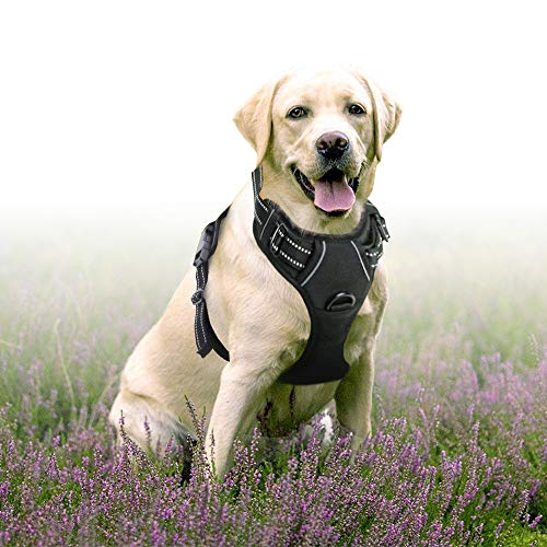 Rabbitgoo  Dog Harness No-Pull Pet Harness Adjustable Outdoor Pet Vest 3M Reflective Oxford Material Vest for Dogs Easy Control for Small Medium Large Dogs (Black, ()