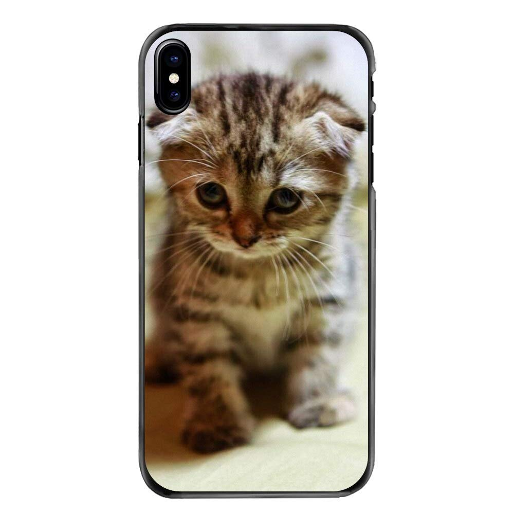 Dad Tiny Inspired by Scottish Fold Phone Case Compatible WithIphone 7 XR 6s Plus 6 X 8 9 Cases XS Max ClearIphones Cases High Quality TPU 1000008045598 Animal Gifts Ay Mug The
