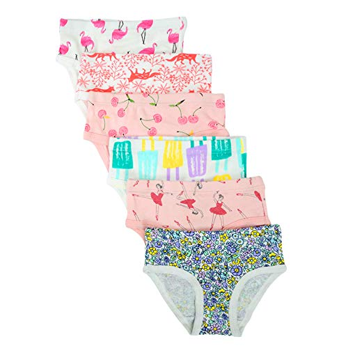 Cotton Undershirt Baby (Closecret Kids Series Baby Soft Cotton Panties Little Girls' Assorted Briefs(Pack of 6) (4-5 Years, Style9))