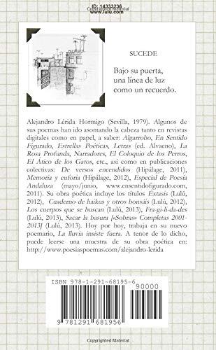 SUCEDE (Spanish Edition): Alejandro Lérida: 9781291681956: Amazon.com: Books