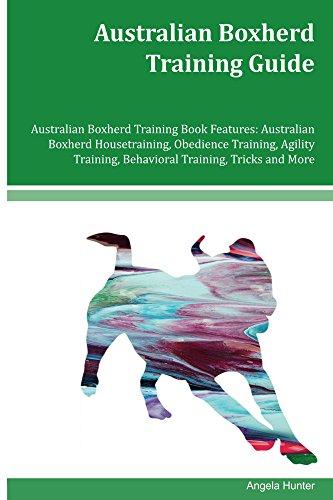 - Australian Boxherd Training Guide Australian Boxherd Training Book Features: Australian Boxherd Housetraining, Obedience Training, Agility Training, Behavioral Training, Tricks and More