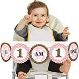 1st Birthday Girl - Fun to be One - High Chair Birthday Banner