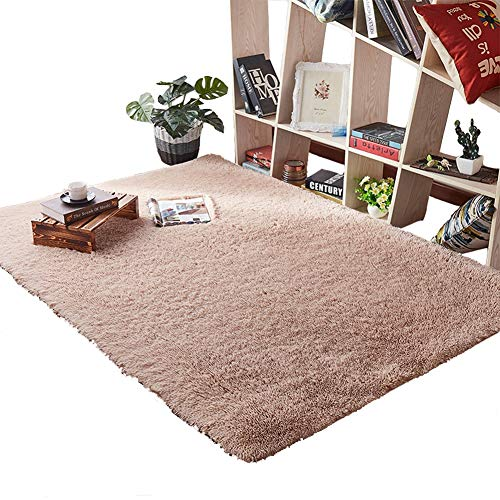Lyfreen Anti-Skid Shaggy Area Rug Ultra Soft 4CM Thicken Shag Rug 31.49 by 47.24 inch Super Soft Shag Area Fur Rugs Dining Room Home Bedroom Carpet Floor Mat