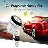 Eocean Car Humidifier, 4 in 1 Car Aroma Diffuser, Car Air Purify with Dual USB Port, Auto Off Function(Black)