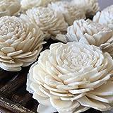 Sola Wood Flowers - One Dozen Wholesale