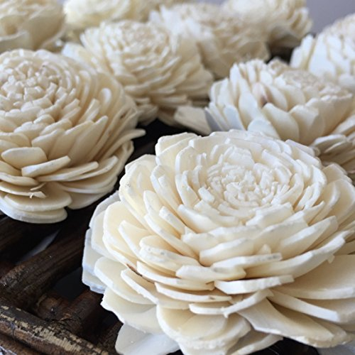 Sola Wood Flowers - One Dozen Wholesale