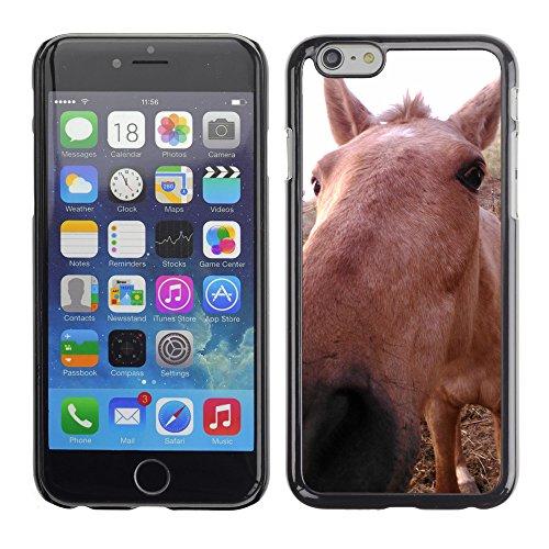"""Premio Sottile Slim Cassa Custodia Case Cover Shell // F00012081 cheval // Apple iPhone 6 6S 6G PLUS 5.5"""""""
