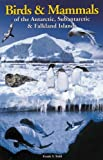 Front cover for the book Birds And Mammals of the Antarctic, Subantartic And Falkland Islands by Frank S. Todd