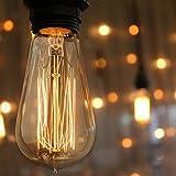 Vintage Incandescent Edison Bulb Set: 60