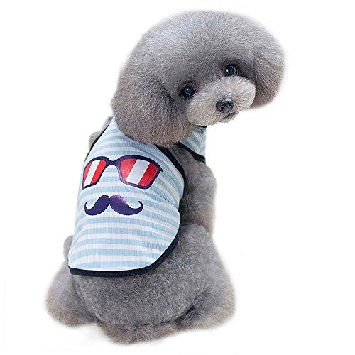 - WEUIE Clearance Sale! Puppy Clothes Small Dog Vest Pet Dog Glasses Beard Vest Dog Cat Cute Summer Clothes (S, Sky Blue)