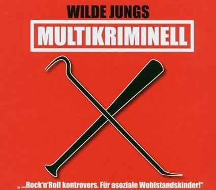 wilde jungs multikriminell album