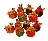 Black Duck Brand Set of 12 Artificial Decorative Harvest 4'' Pumpkins/Gourds Fall Halloween Decorations (Set of 12)