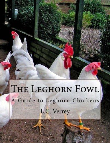 Leghorn Chickens (The Leghorn Fowl: A Guide to Leghorn Chickens)
