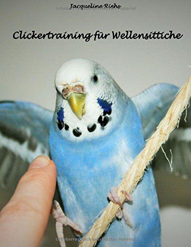 Clickertraining für Wellensittiche