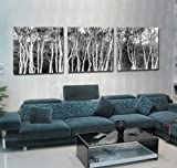 Espritte Art-Huge Black and White Abstract Art Trees, Picture Painting on Canvas Print without framed, Modern Home Decorations Wall Art set of 3 Each is 5050cm #cy-775 by Landscape