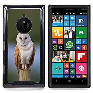 Eason Shop / Premium SLIM PC / Aliminium Casa Carcasa Funda Case Bandera Cover - Nieve Encaramado plumas blancas - For Nokia Lumia 830