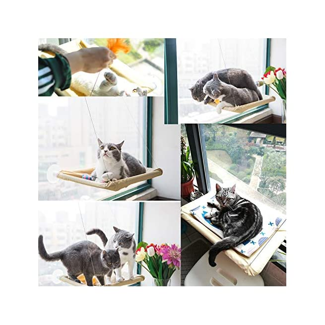 Peachy Cat Window Perch Cat Hammock Bed Window Seat With Durable Heavy Duty Suction Cups Cat Bed Holds Up To 50Lbs Extra 2 Suction Cups Pet Resting Seat Dailytribune Chair Design For Home Dailytribuneorg