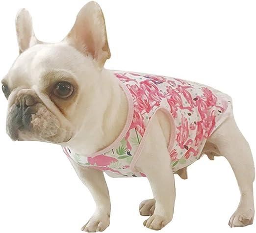 Amosfun Camisa para Perro Hawaiana Traje Cachorro Ropa para Mascotas Chaleco Perro Ropa de Verano para Perros pequeños - Tamaño S (Rosa): Amazon.es: Productos para mascotas