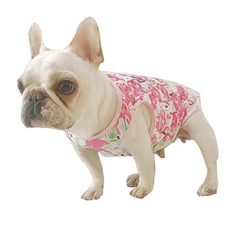 Amosfun Camisa para Perro Hawaiana Traje Cachorro Ropa para ...