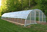 Agfabric 5.5Mil Plastic Covering Clear Polyethylene Greenhouse Film UV Resistant for Grow Tunnel and Garden Hoop, Plant Cover&Frost Blanket for Season Extension, 12x25ft