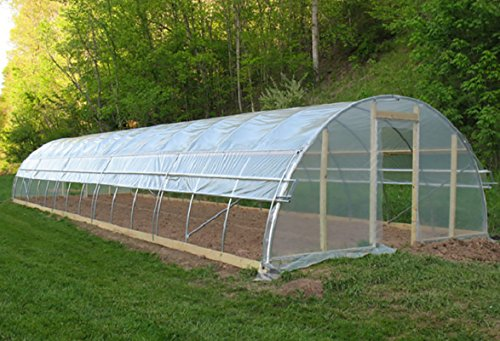 Agfabric 3.1Mil Plastic Covering Clear Polyethylene Greenhouse Film UV Resistant for Grow Tunnel and Garden Hoop, Plant Cover&Frost Blanket for Season Extension, 6.5x100ft by Agfabric
