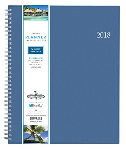 "Blue Sky 2018 Weekly & Monthly Planner, Twin-Wire Binding, 8.5"" x 11"", Endless Summer - 103717"