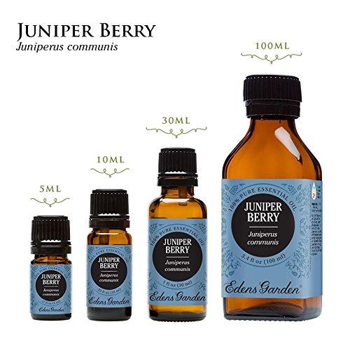 Juniper Berry 100% Pure Therapeutic Grade Essential Oil by Edens Garden