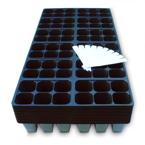 1440 Cells Seedling Starter Trays for Seed Germination +10 Plant Labels (240, 6-cell Trays) by Coconut Oasis