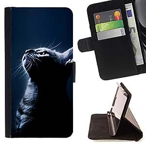 Momo Phone Case / Flip Funda de Cuero Case Cover - Noche Gato Negro Americano de Pelo Corto; - Sony Xperia M5