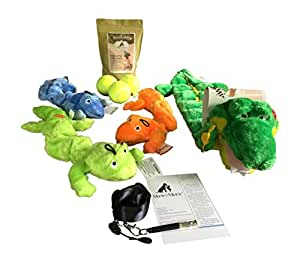 Dog Toy Bundle Kyjen Squeaker Matz, Three Zanies Plush Bungee Geckos, Three Tennis Balls, Organic Dog Treats and Training Whistle, Lanyard, Quick Tip Guide for Medium to Large Dogs 11 Items