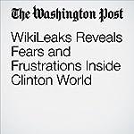 WikiLeaks Reveals Fears and Frustrations Inside Clinton World | Rosalind S. Helderman