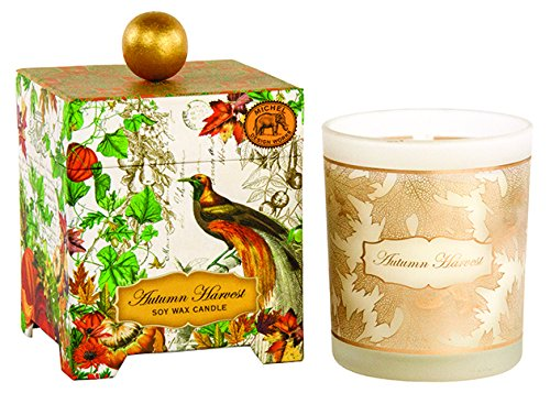 Michel Design Works Gift Boxed Soy Wax Candle, 14-Ounce, Autumn (Harvest Design)