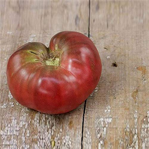 (Black Sea Man Tomato Seeds by Pepper Joe's - 20+ Seeds Per Pack)