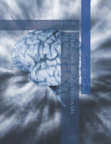 Neuroanatomia Descriptiva del Encefalo: Guia contenidos del curso (Cursos) (Spanish Edition) [Dr. Juan Carlos Bonito Gadella] (Tapa Blanda)