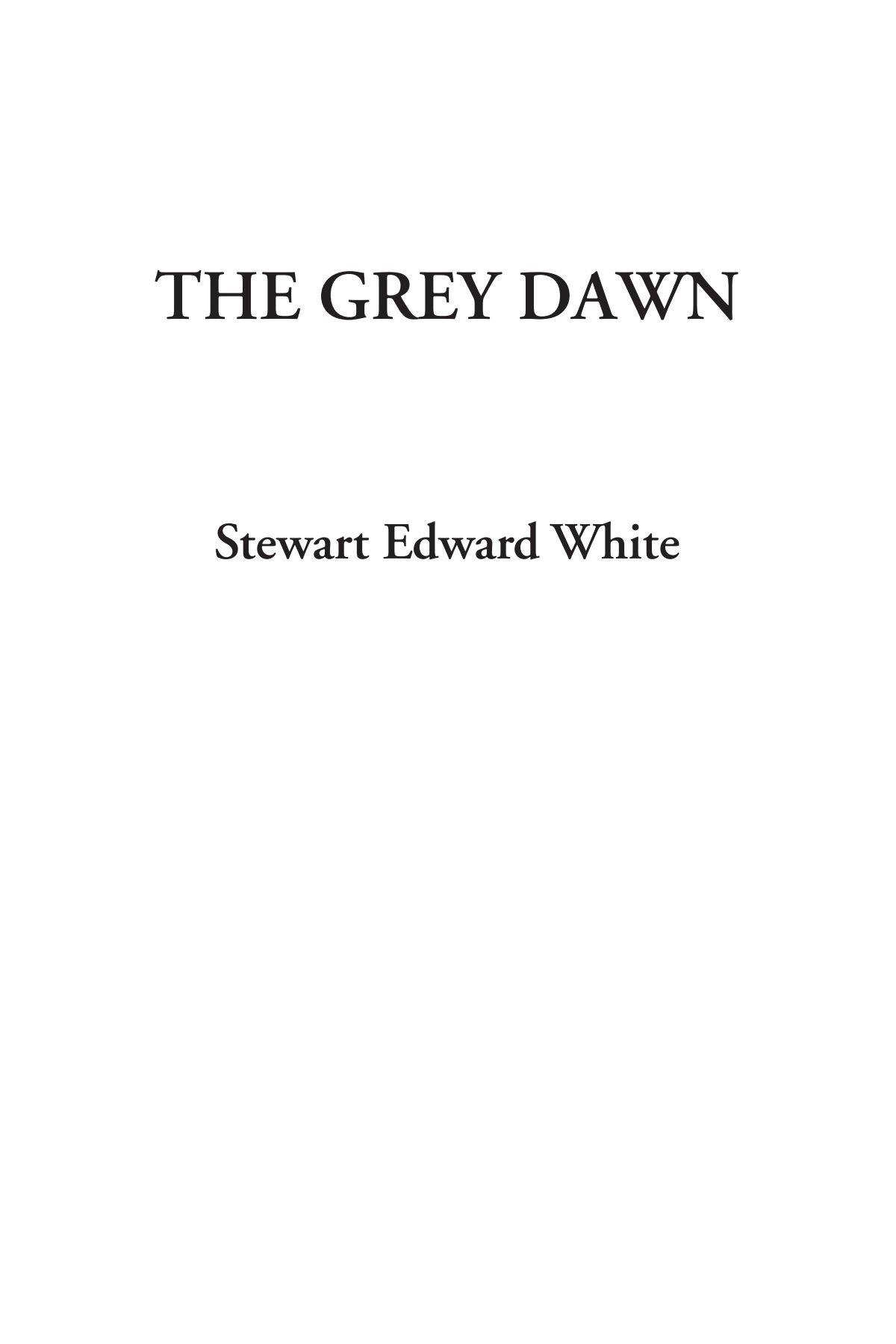 Download The Grey Dawn PDF