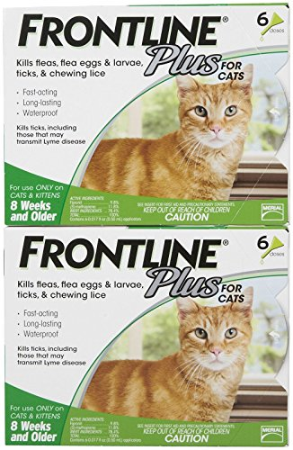Frontline Plus for Cats - 12-Pack by Frontline