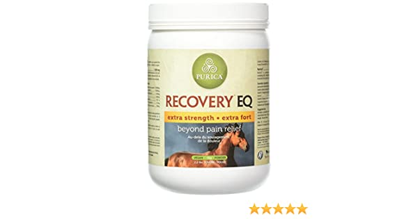 Amazon.com : Recovery EQ HA for HORSES (2.2 lb) : Horse Nutritional Supplements And Remedies : Pet Supplies