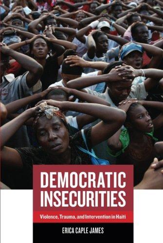 Democratic Insecurities (California Series in Public...