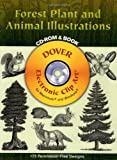 Forest Plant and Animal Illustrations, Mallory Pearce, 048699662X