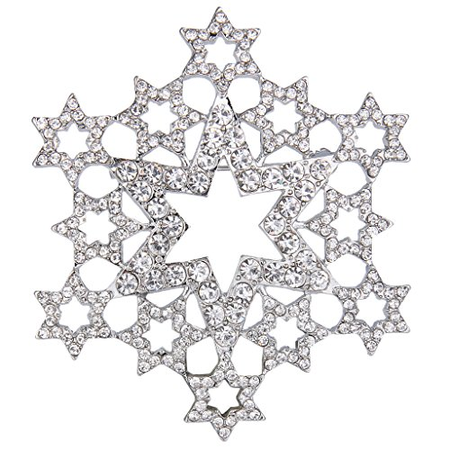 EVER FAITH Women's Austrian Crystal Hollow Star Snowflake Flower Brooch Pin Silver-Tone