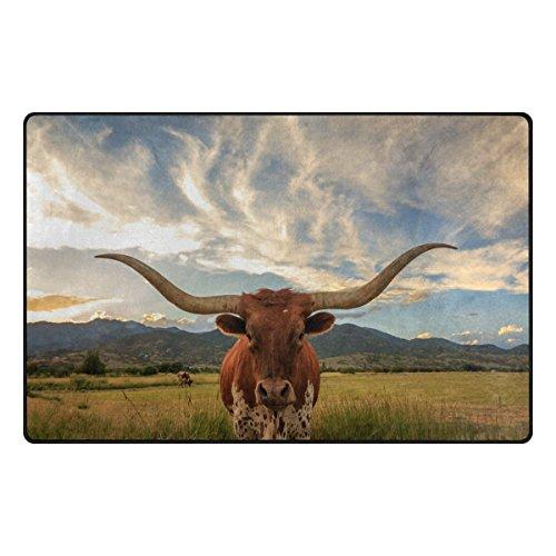 Texas Longhorns Carpets Comparebig12 Com