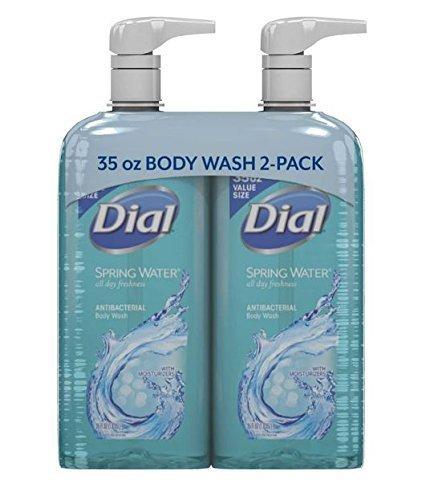 Dial Antibacterial Moisturizing Body Wash - 6