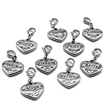 M&T 2007 Stainless Steel Heart Clasp Charms Set 9PCS, Inspiration Charms Accessory C01