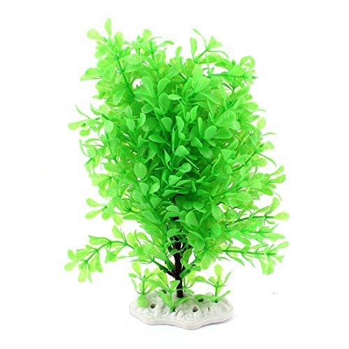 Amazon.com : eDealMax Ornamento planta acuática de cerámica Base de Emulational 24cm Altura Verde : Pet Supplies